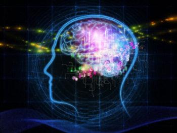 bcbl neurociencia